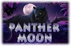 http://vulcanmilliony.com/panther-moon/