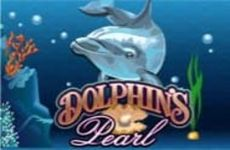 http://vulcanmilliony.com/dolphins-pearl/